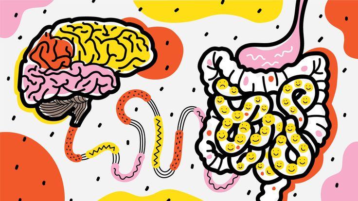 Низший разум: Как кишечные бактерии управляют нашим мозгом — Мы привыкли к тому, что нашим поведением управляет мозг, — но что управляет мозгом? Оказывается, порой безмолвные пассажиры-микробы норовят взять на себя управление. Bird In Flight разбирается, как не отдать принятие решений бактериям.