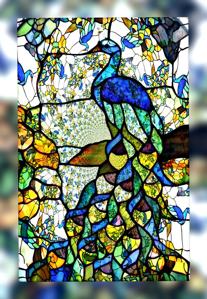 Stained Glass Designs : Peacock stained glass sunroom peacocks and
