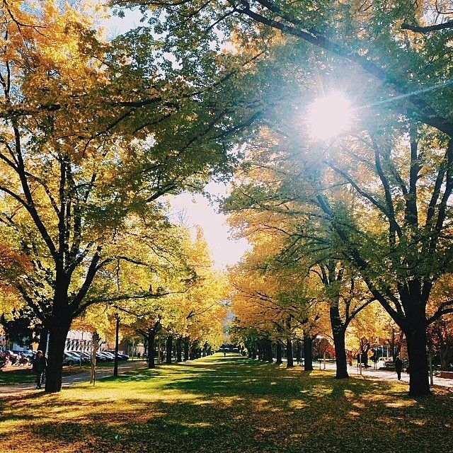 """Instagrammer benmccoll is loving the """"autumn vibes"""" at the Australian National University!"""