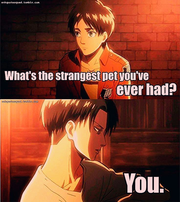Attack On Titan Eren In 2020 Attack On Titan Funny Attack On Titan Meme Attack On Titan Anime