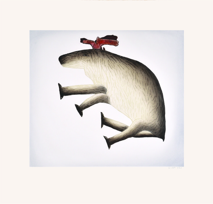 """Item # P14CD07 Price: C$550 Title: Reclining Caribou Dated: 2014 - Signed Artist: Pootoogook, Malaija    Edition: 50  Community:  Link   Cape Dorset     Ref: Print #7 of the 2014 Cape Dorset Collection  Size: inches/cm 28"""" x 29"""" 71.1 cm x 73.7 cm Style: Etching / Aquatint Paper: Arches white http://www.inuitarteskimoart.com/images/P14CD07L.jpg"""