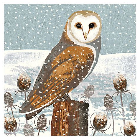 Buy Art Marketing Barn Owl Cards, Pack of 6 Online at johnlewis.com