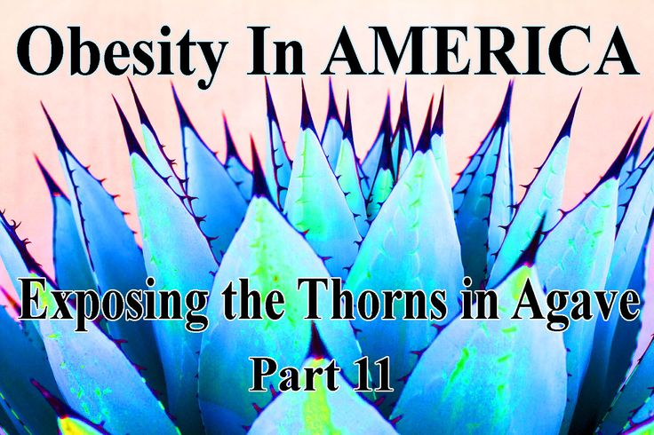 Here's the cover of our March 2016 Newsletter. Read all about why Agave isn't good for us here:  http://myemail.constantcontact.com/Aquaponics-USA-World-Newsletter--March-is-Part-11-of-our-Series-on-Obesity-In-AMERICA.html?soid=1112251298842&aid=HBLye99Vm4c