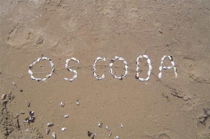 oscoda single girls Meet single women in oscoda mi online & chat in the forums dhu is a 100% free dating site to find single women in oscoda.