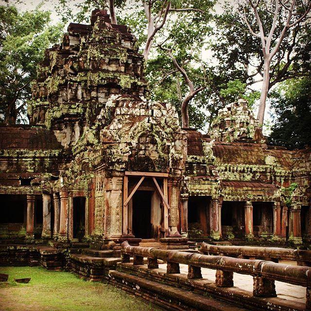【aromalifehack】さんのInstagramをピンしています。 《カンボジア旅行編:少しまえに云ったカンボジアの写真をあげていきます。  #海外 #海外旅行 #海外生活 #海外移住 #ノマド #followforfollow #写真  #love #料理 #trip #カンボジア #遺跡 #森》
