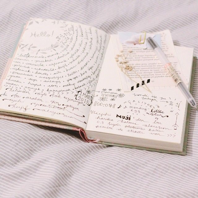 http://www.seaweedkisses.com/2015/09/the-journal-diaries-tugces-diary.html