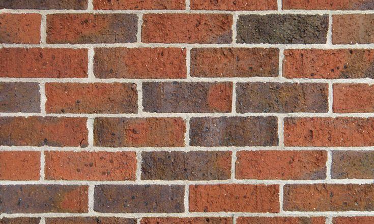 Daniel Robertson Bricks - Hawthorn Reds