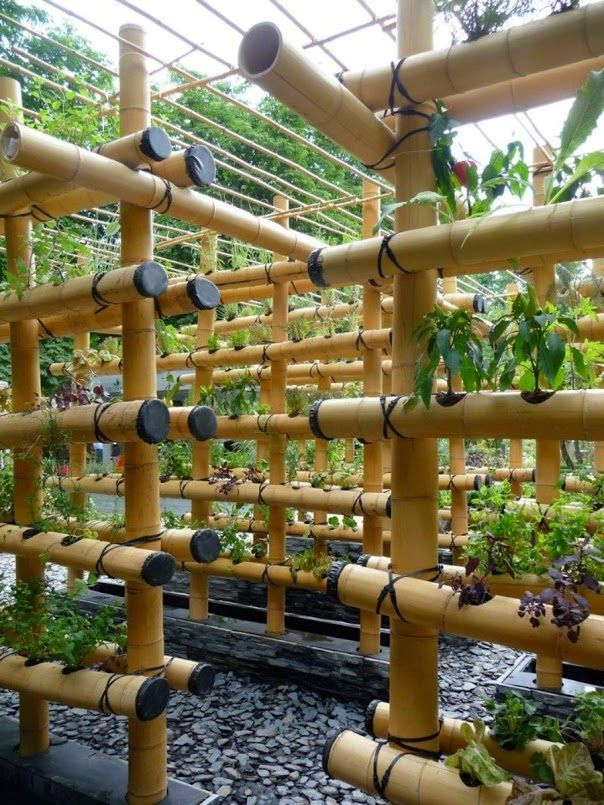 We can do this with smaller bamboo and baskets of fabric hanging between to hold the dirt.