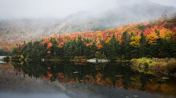 Route 112, New Hampshire #TravelsBest: Kinsman Notched, Photographers Fall, Fall Roads, Fall Foliage, Notched Beavers, Fall Trees, Roads Trips, Fall Reflection, Beavers Ponds Foliage