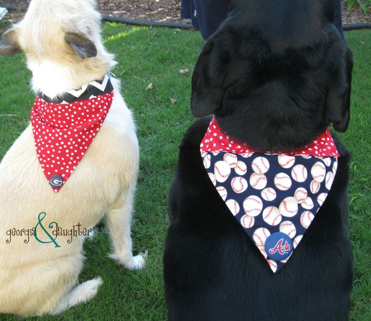 Dog bandana pattern georgia daughter diy dog collar for Dog bandana template