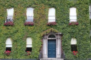 Wander through Dublin - St Stephen's Green