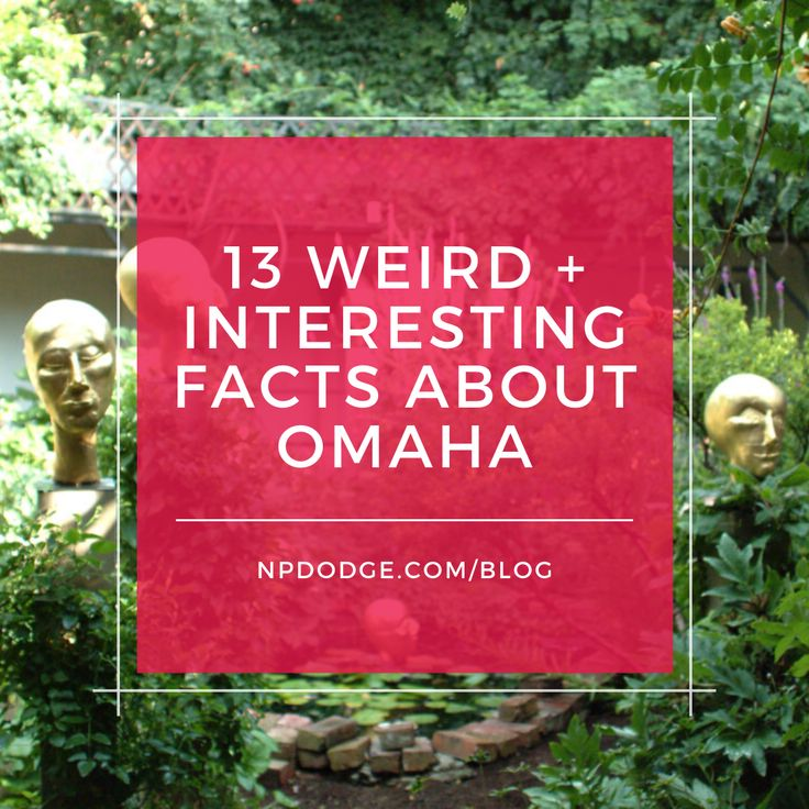 13 Weird + Interesting Facts About Omaha in 2020 Wtf fun
