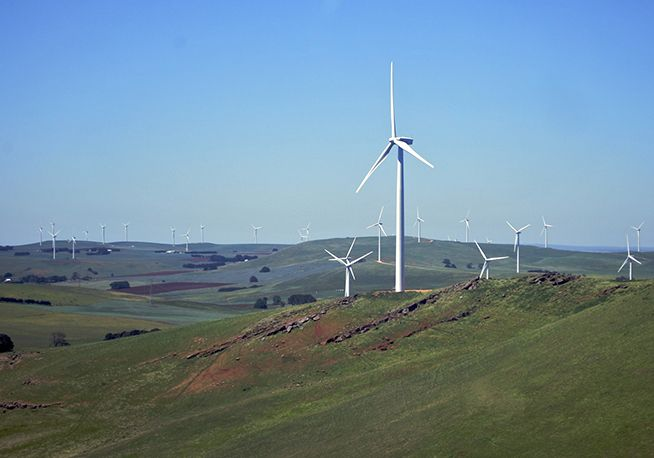 Located approximately 35 kilometres north-west of Ballarat, the Waubra Wind Farm is the largest renewable power project in the Southern Hemisphere. At peak, the wind farm can generate enough green energy to power more than 140,000 homes or enough electricity for the City of Ballarat and surrounding areas.