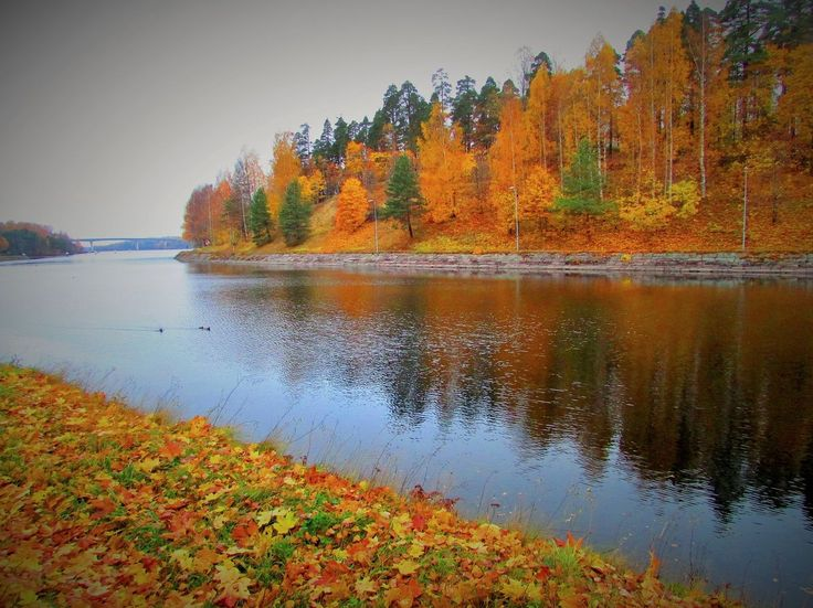 Early morning in the Saimaa Canal, Lappeenranta Finland