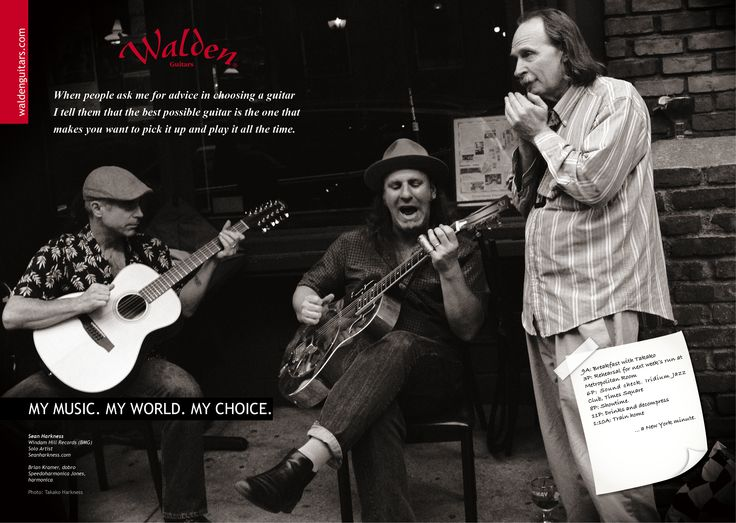 Walden Guitar Brand Image poster