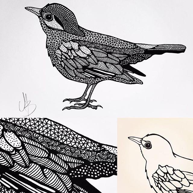 """""""Een merel. Er is iets in de zang van een merel. Het is voorjaar, je wordt wakker. Je ligt te denken in de nacht. Het raam staat open - er is iets. Waarvan die vogel zingt. En je denkt aan wat je moet opgeven. Er is iets in je dat leeg is en het stroomt vol. Met het zingen van die merel."""" Dichter: Rutger Kopland. #vogel #bird #birddrawing #vogeltekenen #merel #blackbird #patronen #patterns #illustratie #illustration #art #creativelife #createeveryday #creativelifehappylife #tekenen…"""