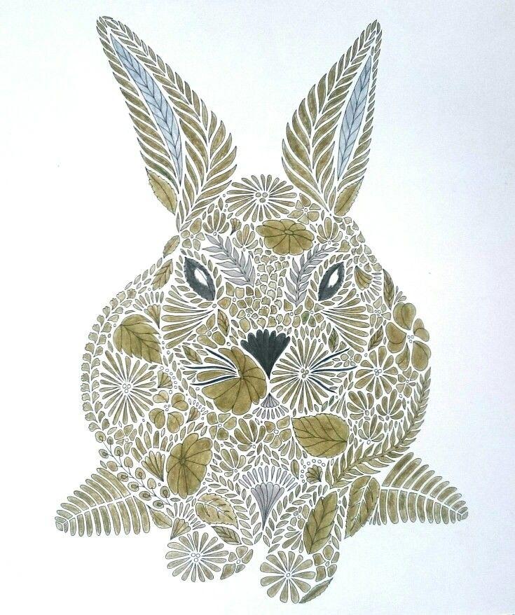 Millie Marotta | Animal Kingdom |  Colored with koh-i-noor mondeluz.