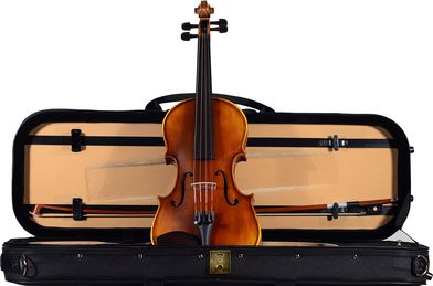 Violin Shop Tampa Violin Rental