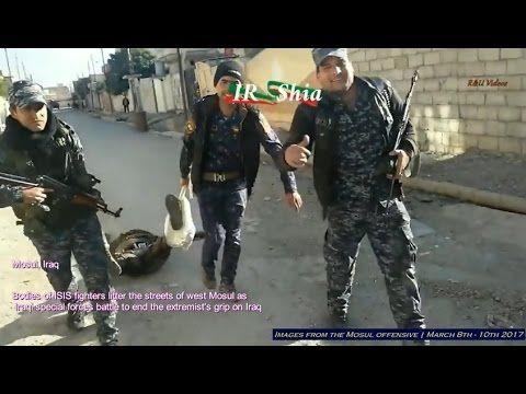 Guerra contra o ISIS no Iraque - Imagens da ofensiva de Mosul (+18) - 8 ...