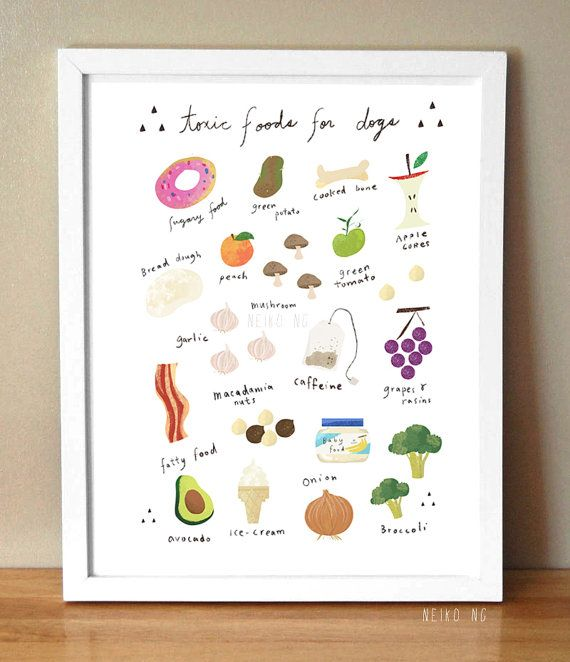 Bad Foods for Dogs Poster, Dog Food Decal, 8.5 X 11 , Kitchen Art