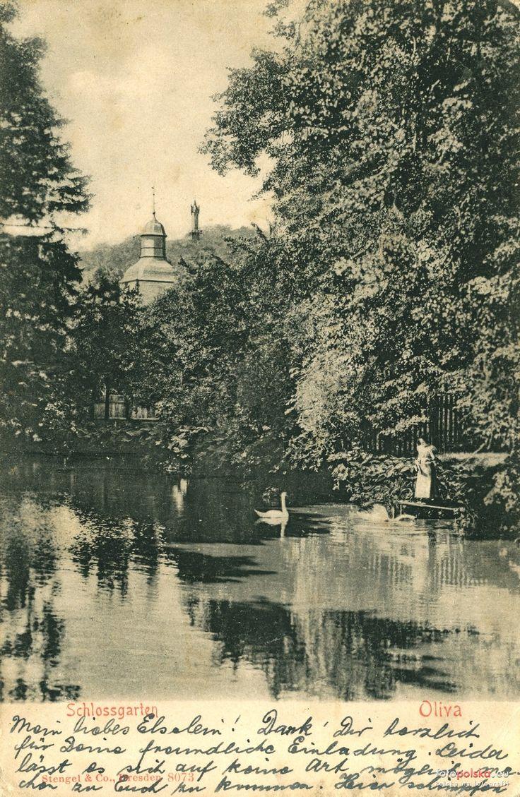 Znalezione obrazy dla zapytania stare zdjecia park oliwski