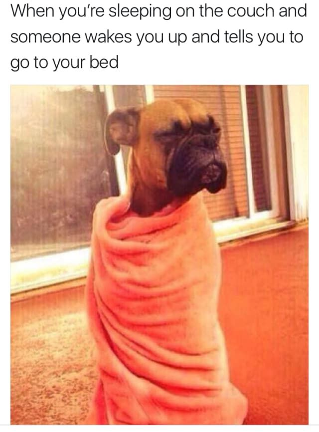 55 Hilarious Memes For Anyone Who Just Loves Sleep