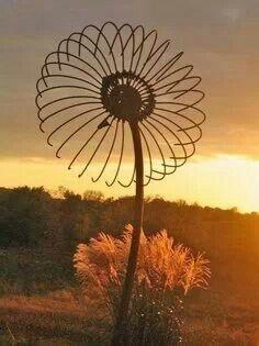 Old fan flower                                                                                                                                                                                 More