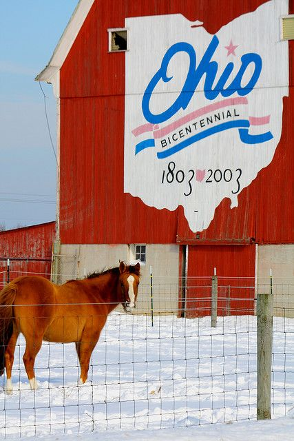 To celebrate and commemorate Ohio's 200th anniversary as a state, at least one barn in each of Ohio's eighty-eight counties has been painted with the bicentennial logotype.