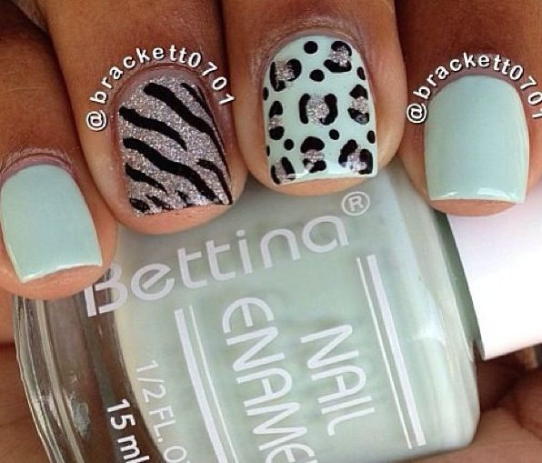 Leopard and zebra ❤️
