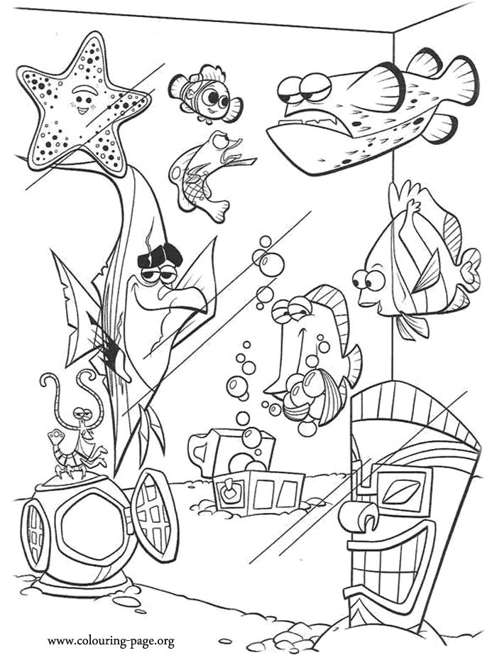 finding nemo the tank gang coloring page - Crush Finding Nemo Coloring Pages