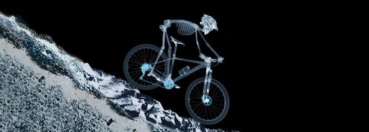 Shimano Europe Bike