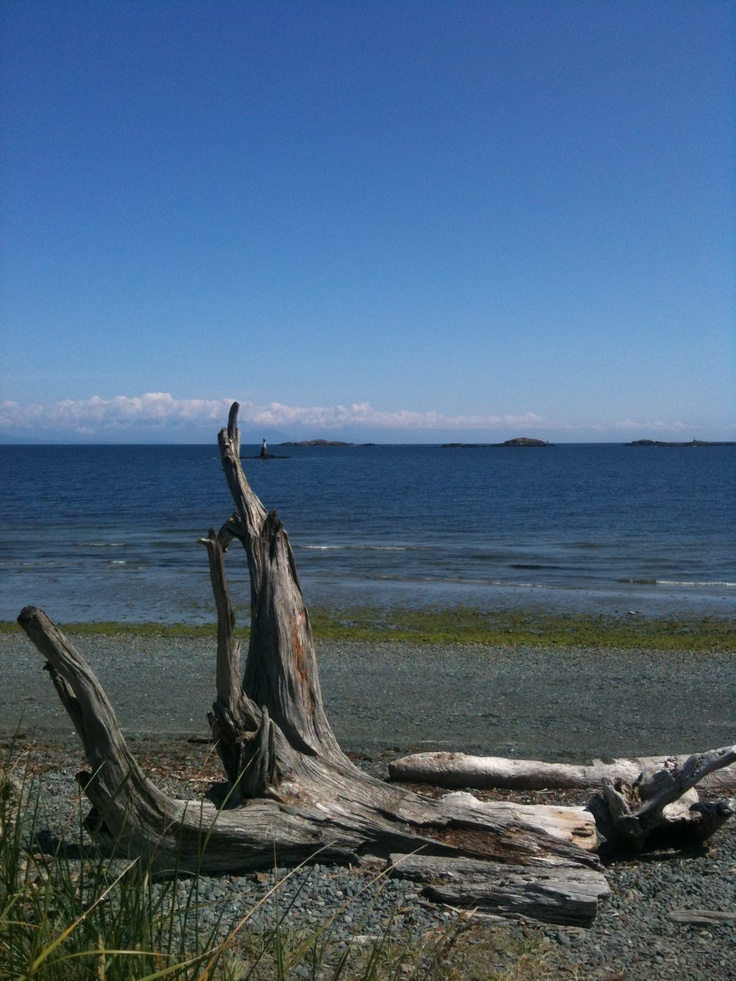 """Another day at the beach """"Pipers Lagoon NanaimoI love it at pipers"""