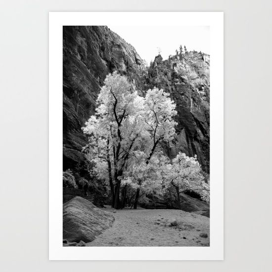 Black and White Fall Colors in Zion National Park, Prints/Posters Orange Sunset at the Beach, Prints & Posters. #Zion #NationalPark #Photography #Christmas #Holidays