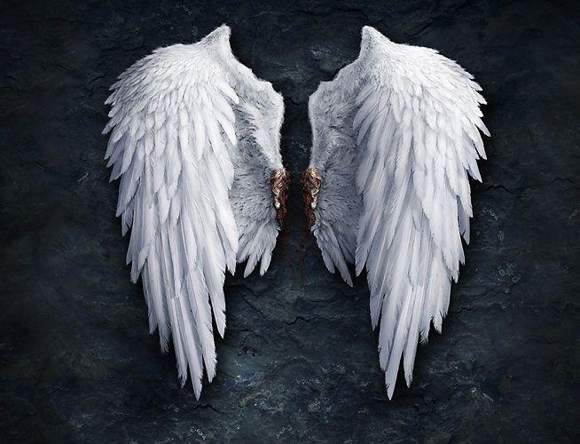 Comment faire des ailes d'anges