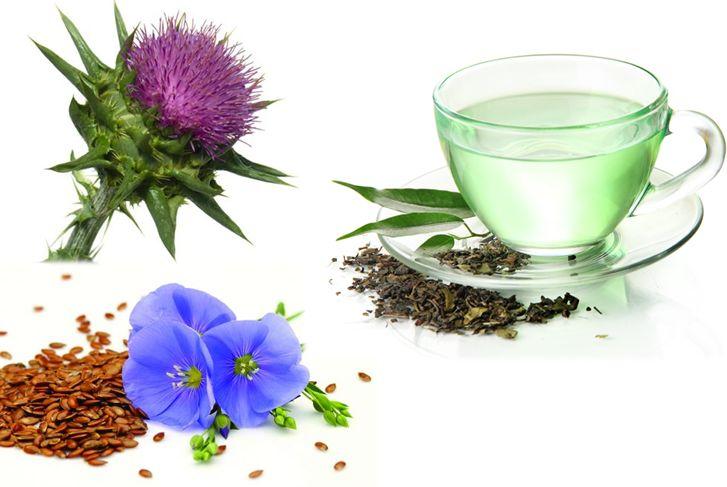 plantas medicinales para la diabetes