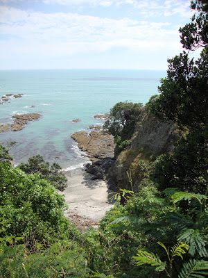 View from Whakatane heads walkway. Oh the things that I think blog: Home is where the aroha is...