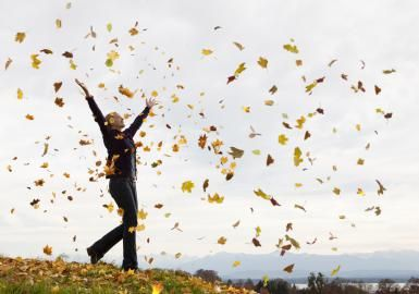 Scorpio New Moon (Nov 14th) - What's the Forecast?: Fall Leaves / Image:  Henglein and Steets for Getty Images