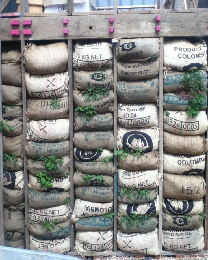Vertical garden from upcycled coffee bags and scaffolding boards. Skip Garden, London N1