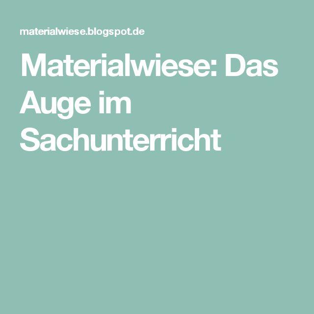 Materialwiese: Das Auge im Sachunterricht
