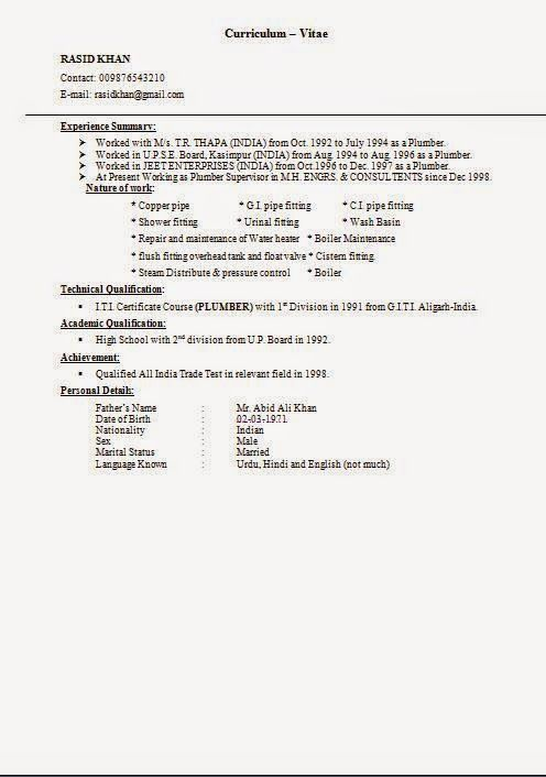format of cv download Sample Template Example ofExcellent Resume - iti resume format