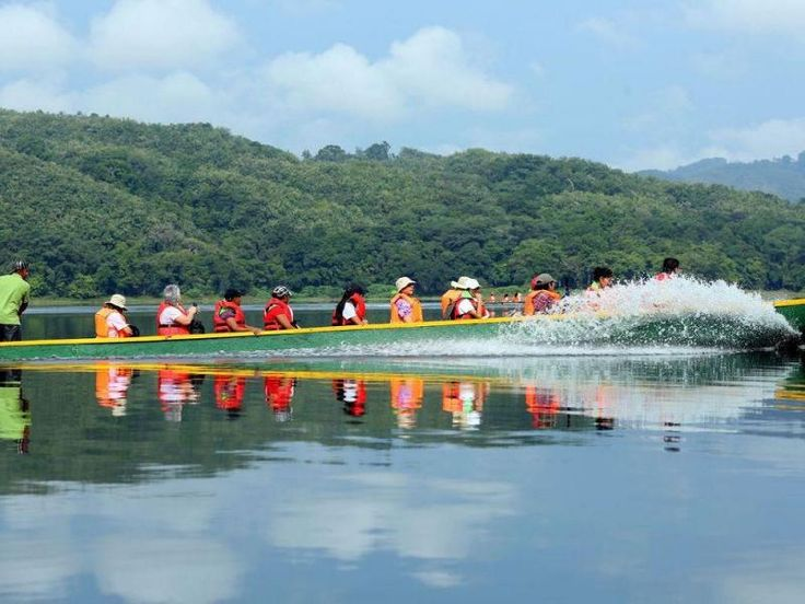 Parque Nacional Chagres, El río Chagres y sus numerosos afluentes (entre estos el lago Alajuela) constituyen el hábitat de más de 59 especies de peces de agua dulce.