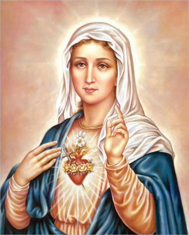 131 best images about Immaculate mary on Pinterest ...