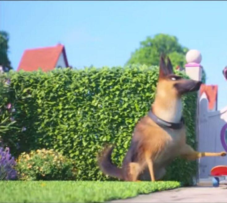 The Secret Life Of Pets Stream German