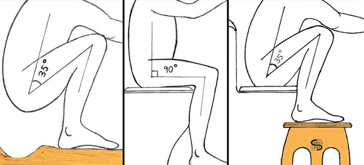 The Science of the Toilet Stool