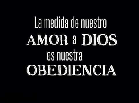 La medida de nuestro AMOR a Dios es nuestra obediencia.