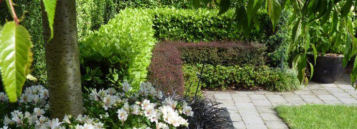 HEDGE Garden Design & Nursery | Landscape & Garden Design Wellington
