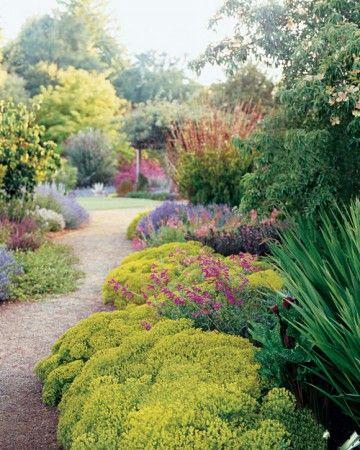 "Bright Colors - The garden's main cross axis cuts through borders of euphorbia, Crocosmia ""Lucifer,"" Callirhoe involucrata, mixed penstemons, Lavandula angustifolia ""Hidcote,"" and Rhodocoma gigantea; the distant golden locust echoes the euphorbia's hue."