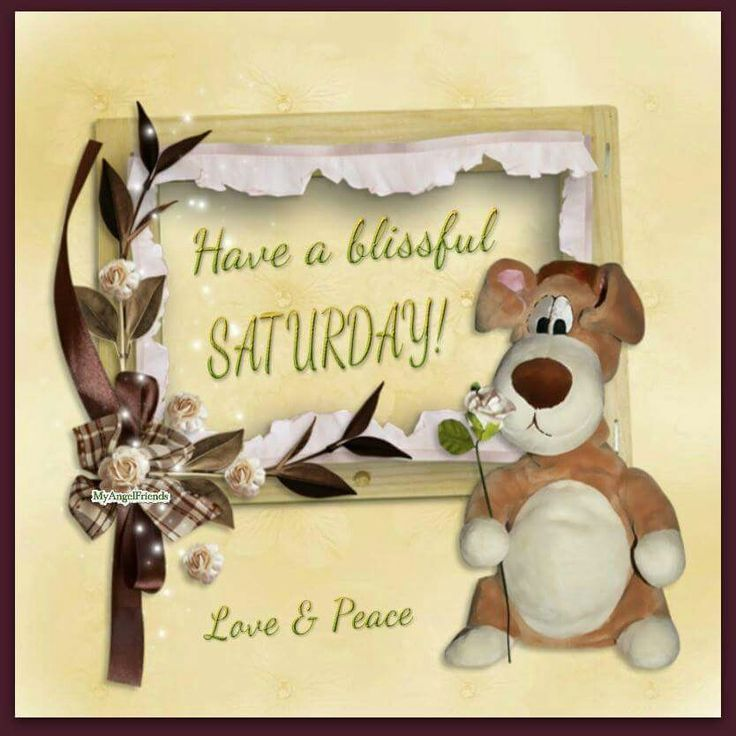 Blissful Good Morning Quotes: Have A Blissful Saturday!