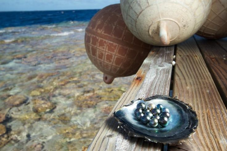17 Best Images About Loose Pearls On Pinterest South Sea