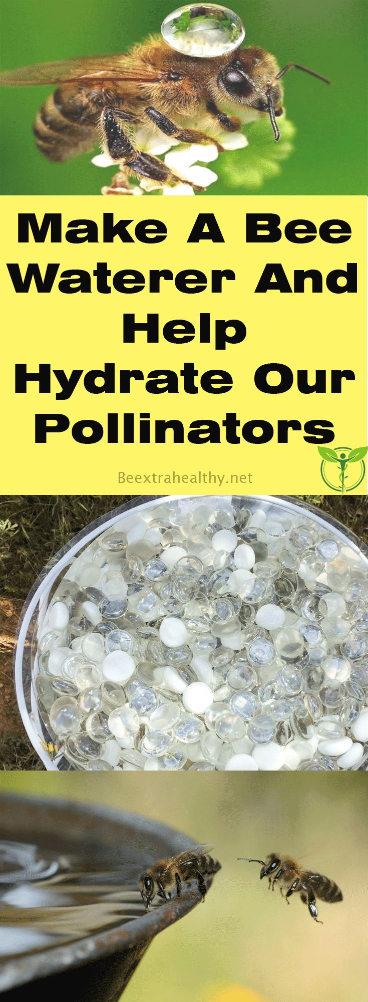 Make A Bee Waterer And Help Hydrate Our Pollinators - Honey bees tend to no less than 2,000 flowers in a day, with tiny wings beating 10,000 times in one minute, carrying dust, and drastically helping our food supply.